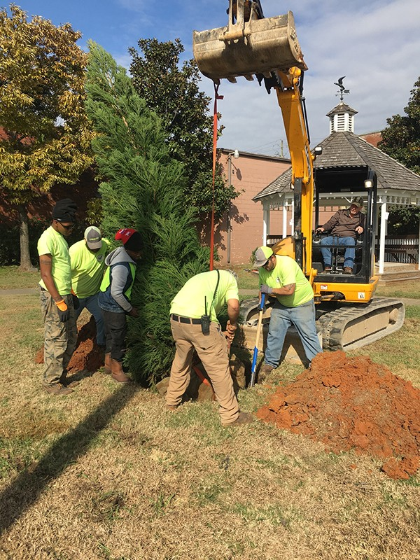 Leeds Downtown Christmas Tree Has Been Planted in preparation for  Leeds Downtown Christmas Tree Lighting Event coming up Thursday, November 29 at 6:30 pm