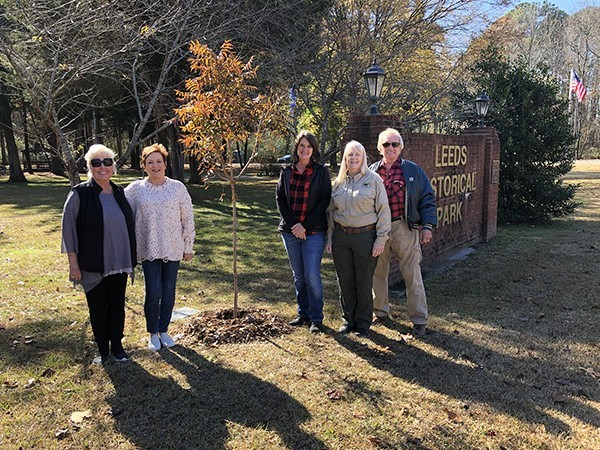 City of Leeds Tree Commission Project at Leeds Memorial Park November 2019